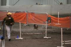 Chuck+-+jump