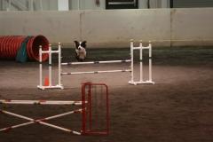 Triton+-+Jump